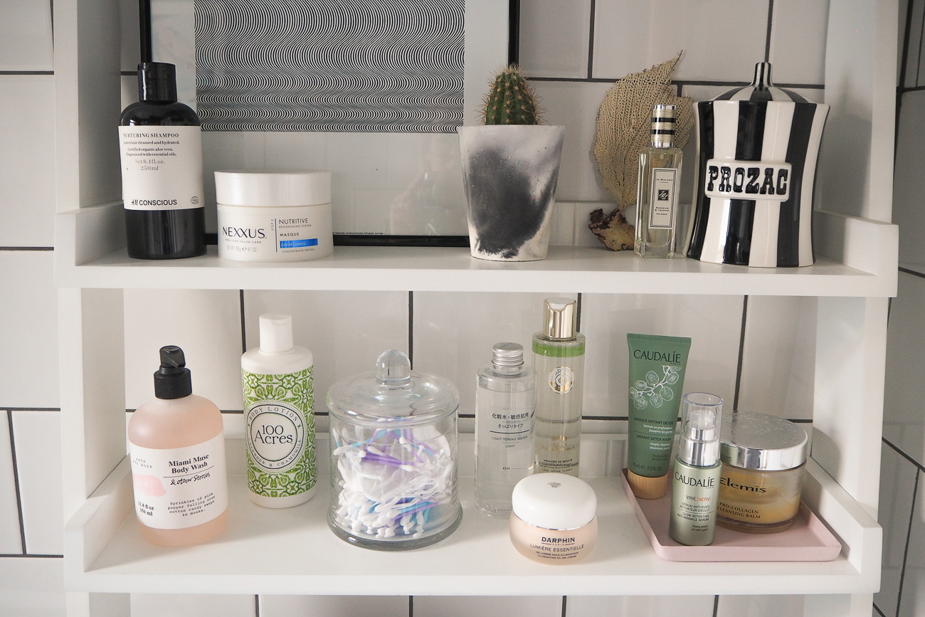 The Frugality House bathroom shelves