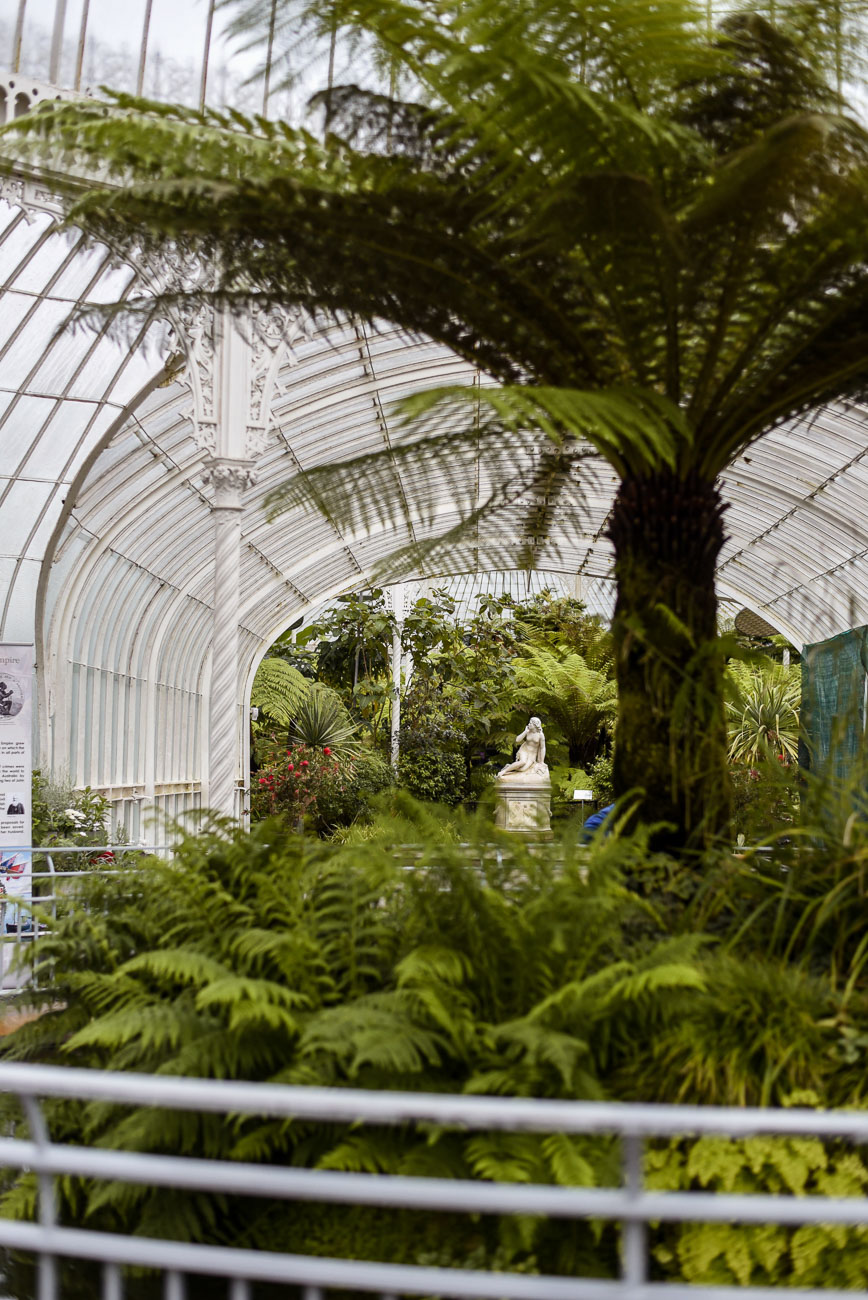 The Botanical Gardens in Glasgow.